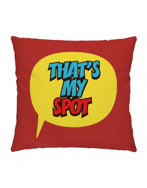 THATS MY SPOT    抱枕